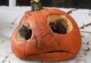 Sad Pumpkin on Doorstep Wishes Someone Would Just Put It Out Of Its Misery
