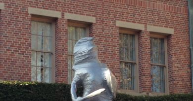 Visibly Erect Tommy Trojan Asks to Be Covered in Duct Tape All Year