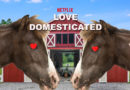 New Netflix Dating Show Literally Just Locking Two Horses in a Barn and Swallowing the Key