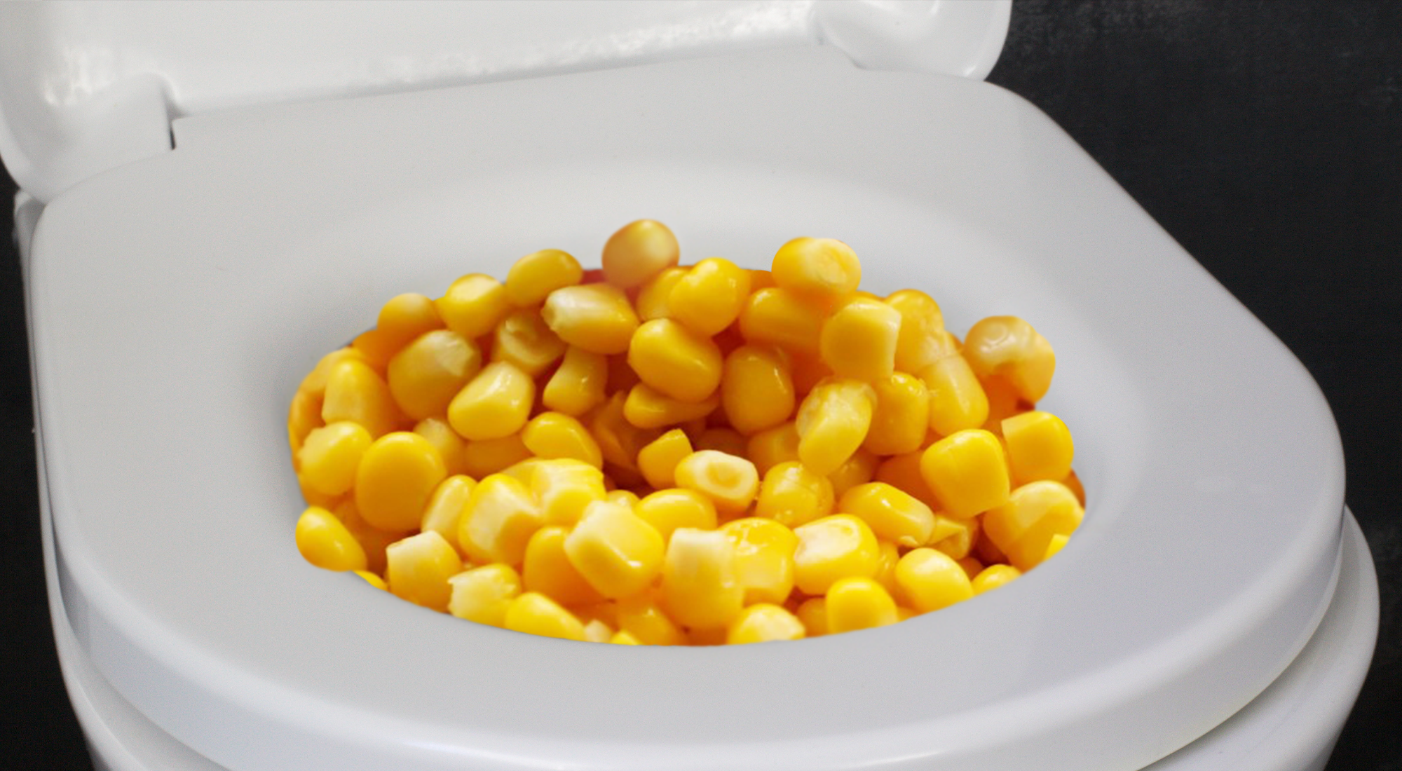 2. Have you experienced corn in your stool in the past 48 hours? Don't be shy, this is a judgement-free zone.